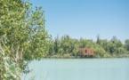 Les Cabanes des Grands Cépages : ouverture d'un nouveau domaine éco-responsable à Avignon