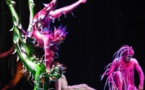 """Été 2017 : le Cirque du Soleil revient à PortAventura avec """"Varekai"""""""