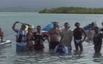 Karibea : éductour agences incentives
