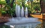 Programmation : Top of Travel parie sur les Antilles Françaises cet hiver
