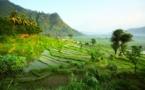 L'Indonésie cousue main par Bali Seken