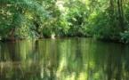 Costa Rica : les Français, cible touristique numéro 1