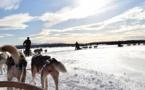 Nortours mise sur la Laponie pour Noël 2017 et le Jour de l'an 2018