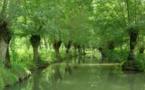 Le Parc Naturel Régional du Marais poitevin candidat aux Palmes du Tourisme Durable