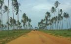 Bénin : le visa touriste à l'arrivée dès le 15 mars 2018