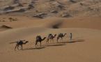 Evaneos lance la Mauritanie et l'Algérie