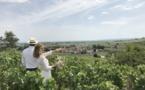 A la Française : le spécialiste de l'œnotourisme débarque en Bourgogne
