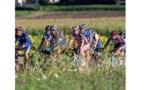 La Semaine fédérale de cyclotourisme fera découvrir les Vosges à 10 000 cyclistes