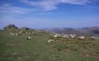 De Biarritz au cœur des Pyrénées, les splendeurs du Pays basque