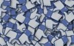 Facebook : la publicité sur ses vidéos arrive