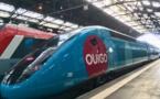 TGV : l'offre Ouigo s'étend à la gare de Paris-Gare de Lyon (Vidéo)