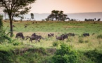 Tanzanie : Tanganyika Expeditions vise 10 000 clients en 2018
