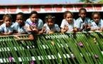 Les Seychelles : la culture au bout du monde