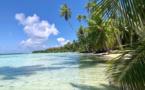 Marché français : la Polynésie en hausse de 8,7 % vs l'année précédente
