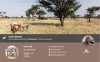 Tanzanie : DMCMag.com accueille Corto Safaris