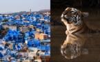 Voyamar présente une nouvelle production en Inde