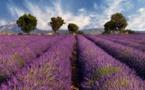 Tourisme en France : l'été devrait suivre la tendance de 2018