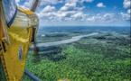 La Guyane : une biodiversité exceptionnelle pour les amateurs d'exotisme