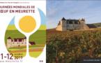 Château du Clos de Vougeo : Championnat du monde de l'œuf en meurette (ben, oui !)