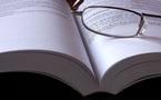 """Me E.Llop : """"En 2013, les litiges inférieurs à 10 000 € seront traités par des juges professionnels..."""""""