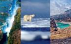 """Croisières d'exception publie son catalogue """"Nature & exploration"""""""