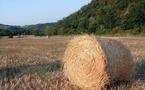 Salon de l'agriculture : l'agritourisme c'est 36 % des recettes de la destination France