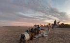 I. Le Sud tunisien, de Tozeur à Douz, un soleil d'hiver à (re)découvrir