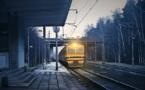 """""""Flygskam"""" : la nuit, un train peut en cacher un autre..."""
