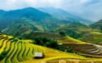 Coronavirus : le SETO suspend les voyages à forfait vers le Vietnam