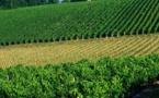 France: Bordeaux et le lac Vassivière en Nouvelle Aquitaine