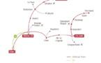 Thalys renforce son programme à 60% de la capacité habituelle dès le 30 août 2020