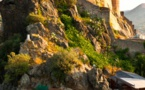 La Corse, destination Confiance