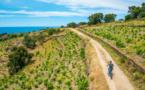 Cyclotourisme : remettez-vous en selle à Argelès-sur-Mer !