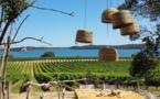 Corsica Incoming, une agence réceptive exclusivement dédiée aux professionnels du tourisme