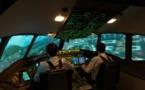 Aéroport de Strasbourg : FlightAdventures s'ouvre aux entreprises