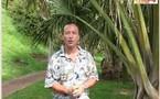 I - La Réunion : Chik (et cyclone)... plus qu'un mauvais souvenir !