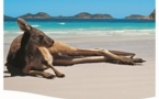 Faré Voyages : nouvelle brochure 2014 sur l'Australie et la Nouvelle Zélande