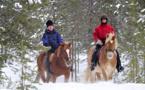 Réveillons insolites : un Nouvel An à cheval en Laponie