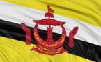 La case de l'Oncle Dom : vol au-dessus d'un nid de Brunei...