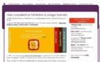 SEH : développer la stratégie digitale pour s'affranchir de la dépendance aux OTA