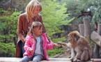 Alsace : plus de 307 000 visiteurs pour la Montagne des Singes en 2014