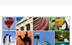 Kevelair America lance un bureau d'affrètement aérien et un DMC au Panama