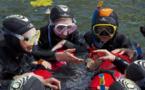 Séjours snorkeling, plongée : Dune se déploie en France et à l'international