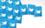 Comment utiliser Twitter lorsque l'on est un professionnel du voyage ?