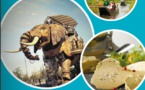Destination Groupes : l'Allier et le Territoire de Belfort, nouveautés de la brochure 2016