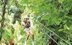 Sainte-Lucie : une nature majestueuse