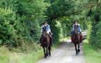 La Route D'Artagnan (France) : un itinéraire équestre qui devrait voir le jour d'ici 2017