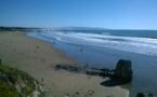 Eductour Visit California : Fascinante Highway 1 - Jour 5