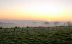 La Case de l'Oncle Dom : Selectour Afat, quand le brouillard se lève…