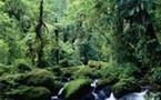Amérique Centrale : 7,1 millions de touristes en 2007